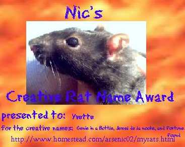 visit Arsen and Nics Award site